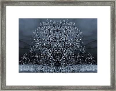 The Artwork Of Trees Framed Print by Dan Sproul