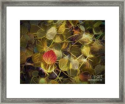 The Aspen Leaves Framed Print by Veikko Suikkanen