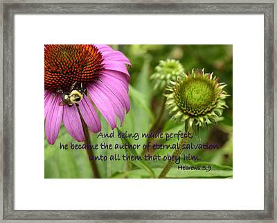 The Author Of Salvation Framed Print