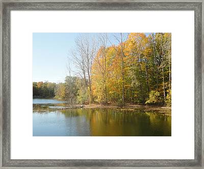 The Autumn Lake Framed Print by Guy Ricketts