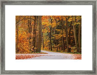 The Autumn Road Framed Print by Martin Bergsma