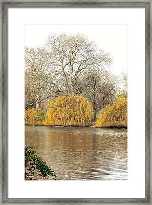 The Autumn Scene Framed Print by Marwan Khoury