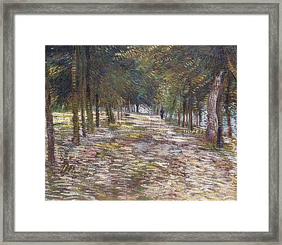 The Avenue At The Park Framed Print