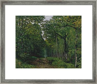 The Avenue Of Chestnut Trees At La Framed Print