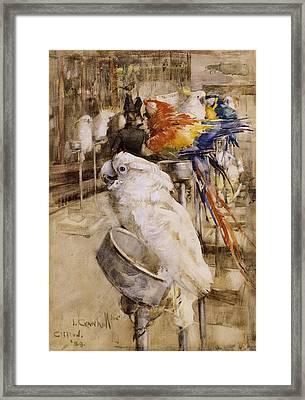The Aviary, Clifton, 1888 Framed Print
