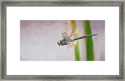 The Awakened One Framed Print by Dianna Poindexter