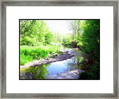 The Babbling Stream Framed Print