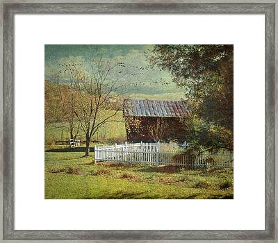 The Backyard Framed Print by Fran J Scott