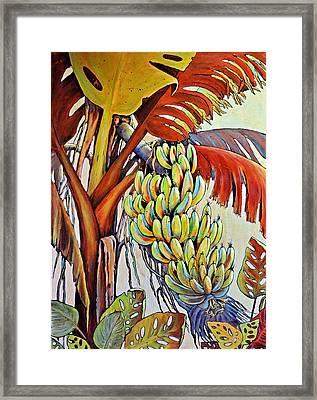 The Banana Tree Framed Print by JAXINE Cummins