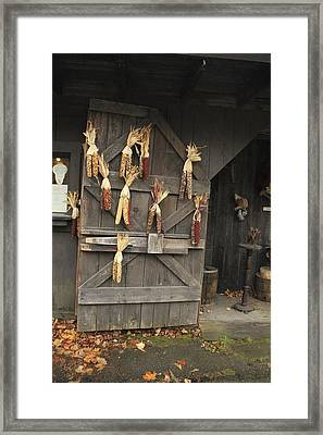The Barn Door Framed Print