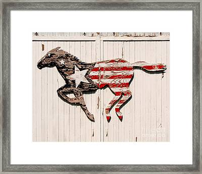 The Barn Horse Framed Print