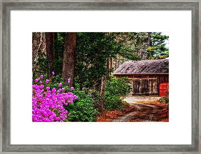 The Barn In Spring Framed Print