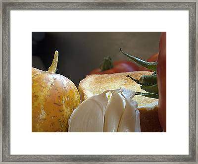 Framed Print featuring the photograph The Basics by Joe Schofield