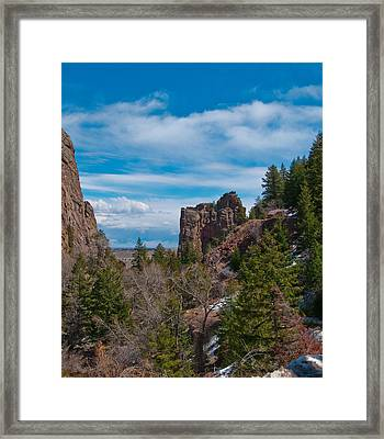 The Bastile  Framed Print