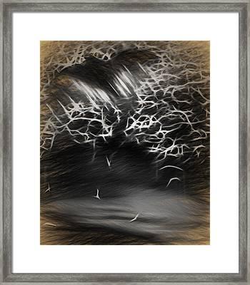 The Bat Cave Framed Print by Steve Ohlsen