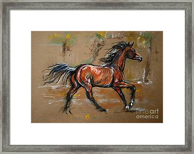 The Bay Horse Framed Print