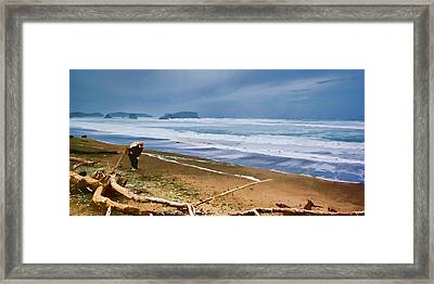 The Beach Comber Framed Print by Dale Stillman