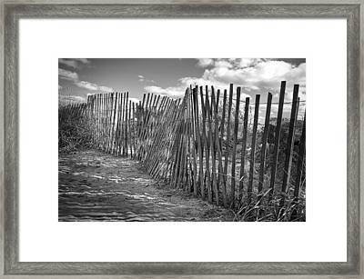 The Beach Fence Framed Print by Scott Norris