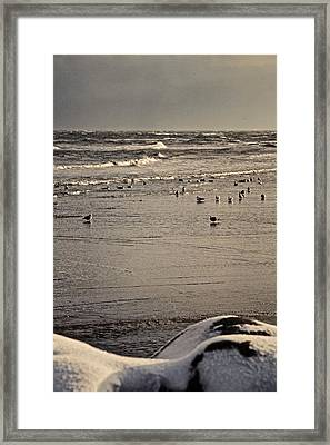 The Beach Is Ours Framed Print by Odd Jeppesen