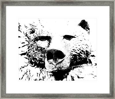 The Bear Framed Print by Charlie and Norma Brock