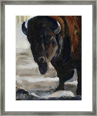 The Bearded One Framed Print by Billie Colson