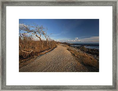 The Beaten Path Framed Print by Eric Gendron