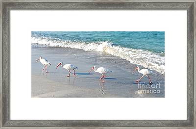 The Beatles In Paradise Framed Print by Margie Amberge