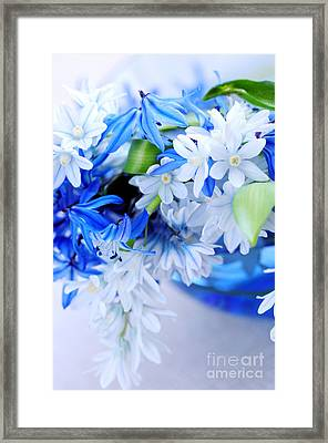 The Beautiful  Blue Flower Framed Print by Boon Mee
