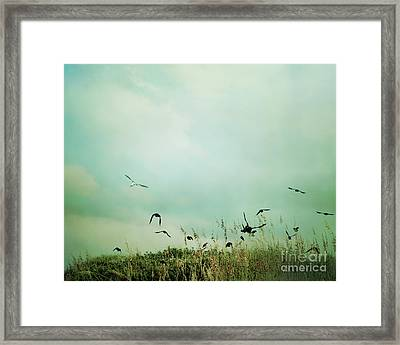 The Beautiful Flight Framed Print by Sharon Coty