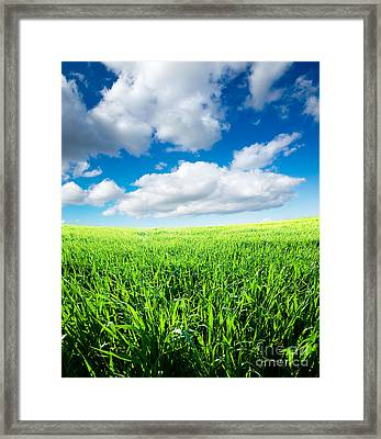The Beautiful Greens Landscape Framed Print by Boon Mee