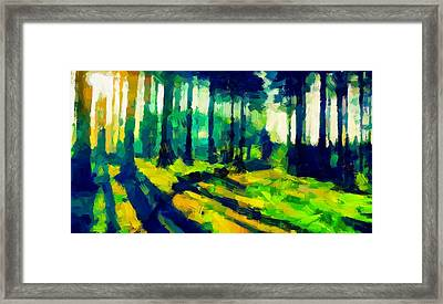 The Beautiful Trees Tnm Framed Print by Vincent DiNovici