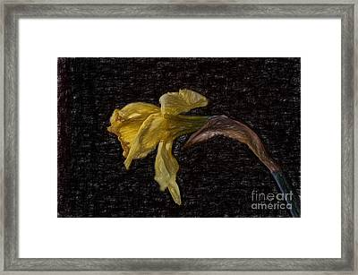 Beauty At The End Framed Print by Lois Bryan