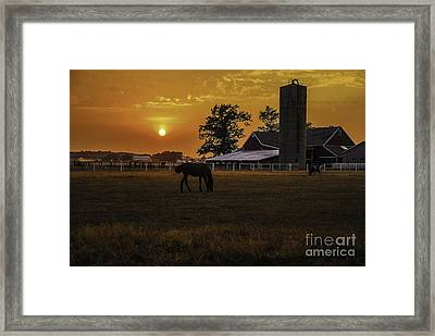 The Beauty Of A Rural Sunset Framed Print by Mary Carol Story