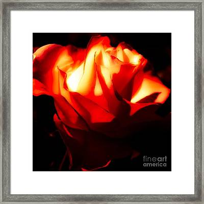 The Beauty Of Life Framed Print by Gayle Price Thomas