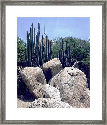 Framed Print featuring the photograph The Beauty Of Nature by Judy Palkimas