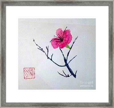 The Beauty Of Solitude Framed Print