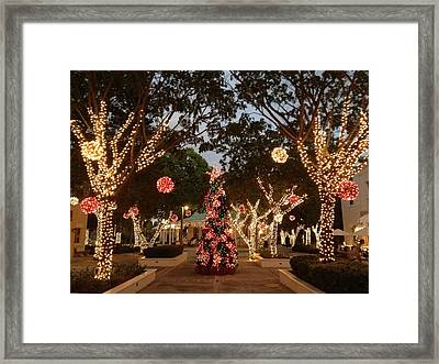 The Beauty Within Framed Print by Selia Hansen