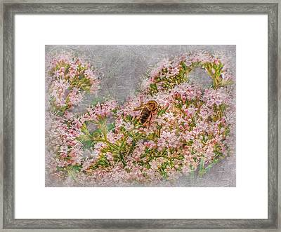 The Bee Framed Print by Hanny Heim
