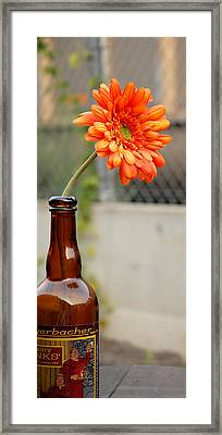 Framed Print featuring the photograph The Beer Garden by Lena Wilhite