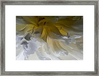 The Beginning 2011 Framed Print by Art Barker