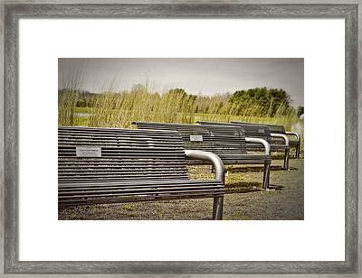 The Benches Framed Print by Tom Gari Gallery-Three-Photography