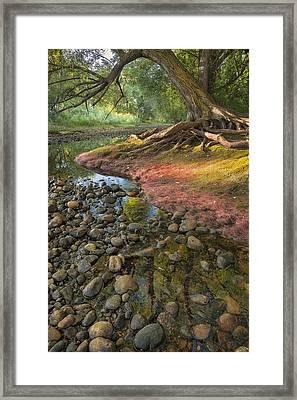 The Bend Framed Print by Michael Van Beber
