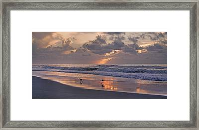 The Best Kept Secret Framed Print