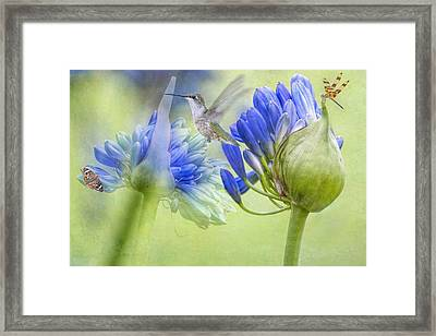 The Best Way To Keep Love Is To Give It Wings Framed Print by Bonnie Barry