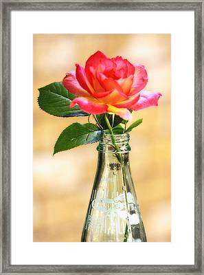The Best With Dr Pepper Framed Print by Joan Bertucci