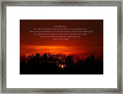 The Bible Says Framed Print by Reid Callaway