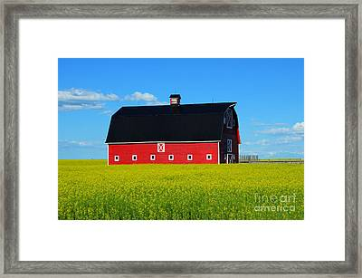 The Big Red Barn Framed Print by Bob Christopher