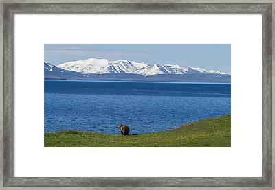 The Big Wide Open Framed Print