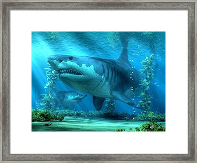 The Biggest Shark Framed Print