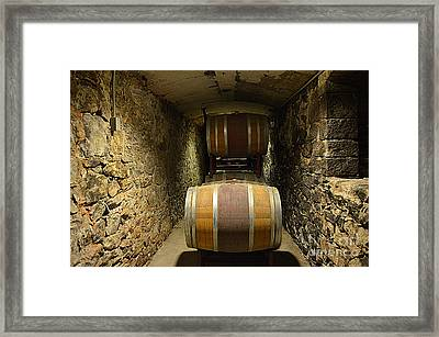 The Biltmore Estate Wine Barrels Framed Print